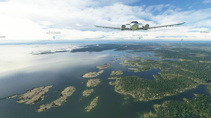 Microsoft Flight Simulator 7_31_2021 9_59_59 AM
