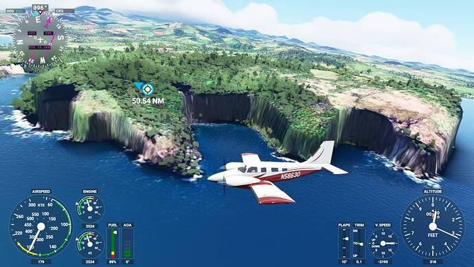 Microsoft Flight Simulator 5_31_2021 11_58_03 AM