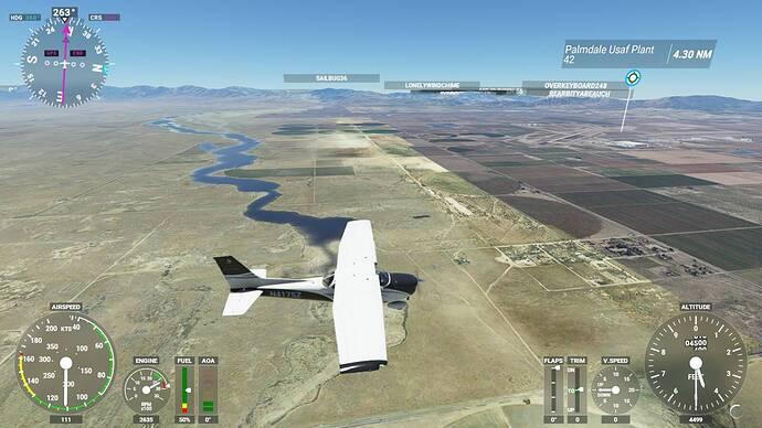 Microsoft Flight Simulator 6_4_2021 11_45_50 AM