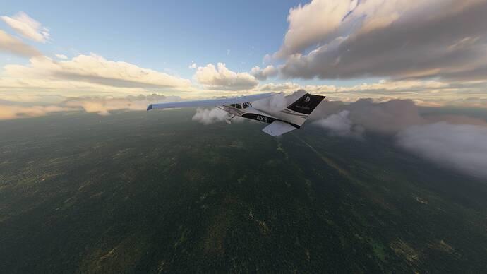Microsoft Flight Simulator 04.06.2021 20_15_59