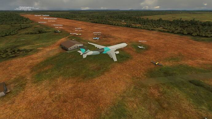 Microsoft Flight Simulator 8_1_2021 1_44_21 PM