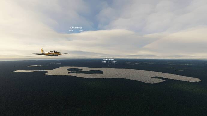 Microsoft Flight Simulator 9_4_2021 2_23_42 PM