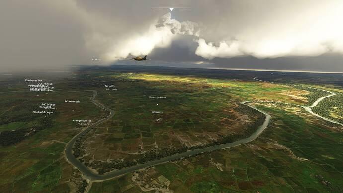 Microsoft Flight Simulator 8_1_2021 1_55_41 PM