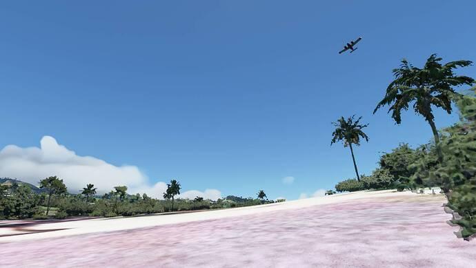 Microsoft Flight Simulator 5_31_2021 12_04_47 PM