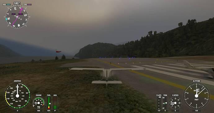 Microsoft Flight Simulator Screenshot 2021.07.17 - 20.40.01.24