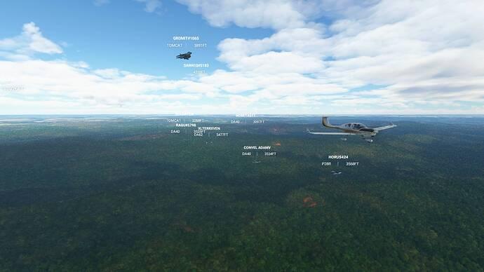 Microsoft Flight Simulator 9_26_2021 12_50_17 PM