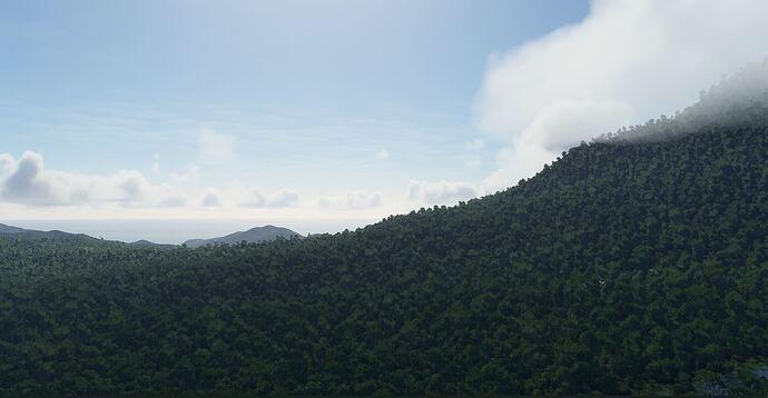 Rainforest8Dominica
