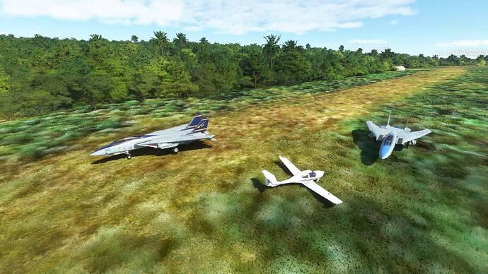 Microsoft Flight Simulator 9_26_2021 11_59_06 AM