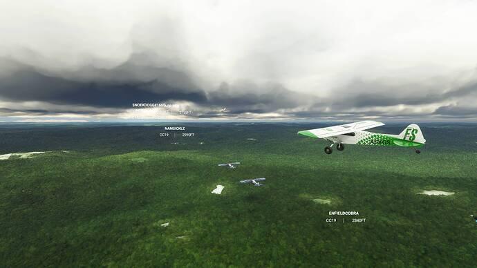 Microsoft Flight Simulator 9_6_2021 12_01_39 PM