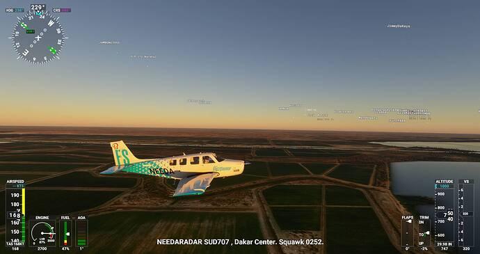 Microsoft Flight Simulator Screenshot 2021.07.25 - 21.02.37.75