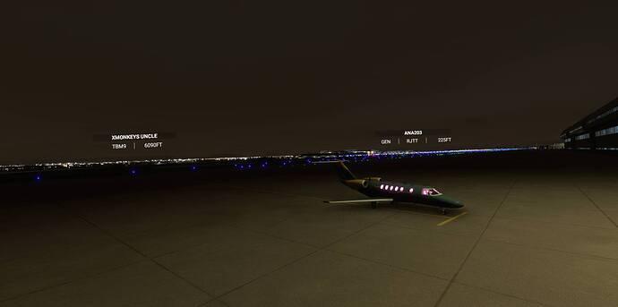 Microsoft Flight Simulator 10_14_2021 11_41_17 AM