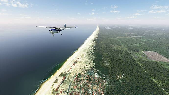 Microsoft Flight Simulator 2021-05-15 14_47_43