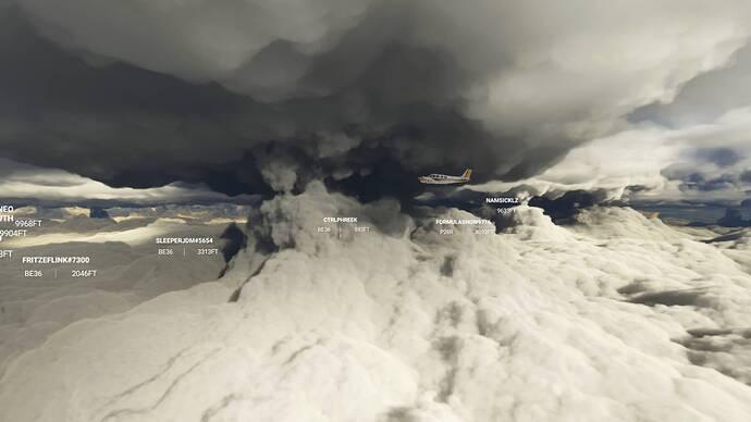 Microsoft Flight Simulator 9_4_2021 12_22_02 PM