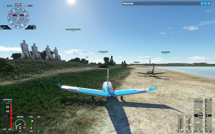 Microsoft Flight Simulator 30_07_2021 11_54_07 p.m.