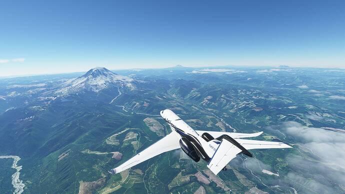 Microsoft Flight Simulator 6_19_2021 10_51_58 AM