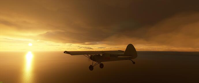 Microsoft Flight Simulator 8_18_2020 10_14_25 PM
