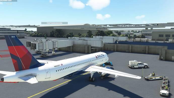 Microsoft Flight Simulator 8_8_2021 11_32_03 AM