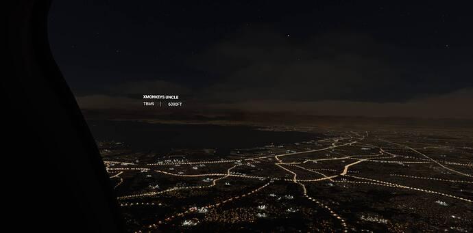 Microsoft Flight Simulator 10_14_2021 11_18_56 AM