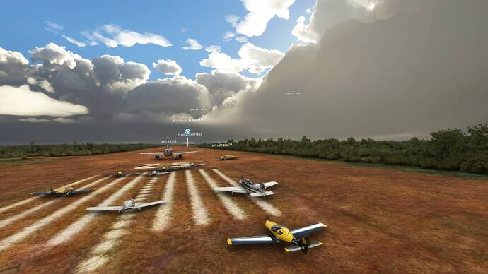 Microsoft Flight Simulator 8_1_2021 1_51_43 PM