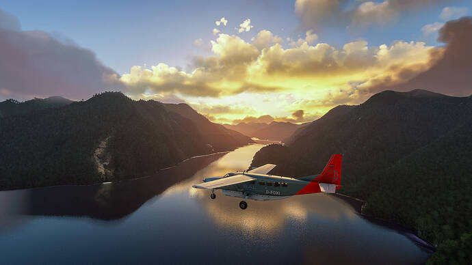 Microsoft Flight Simulator (7)-3
