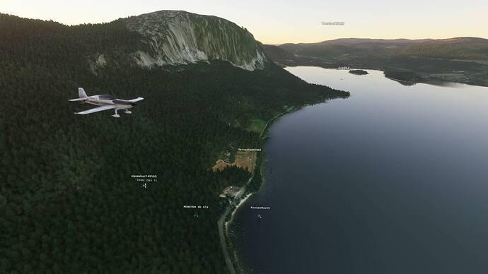 Microsoft Flight Simulator 7_24_2021 1_46_39 PM