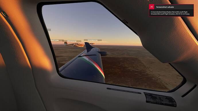 Microsoft Flight Simulator_2021.07.25-22.10_1
