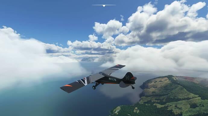 Microsoft Flight Simulator 8_13_2021 1_37_34 PM
