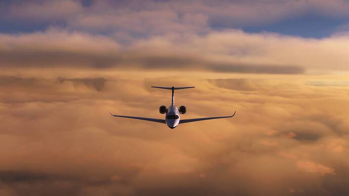 Microsoft Flight Simulator Screenshot 2021.08.14 - 20.17.22.53