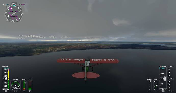 Microsoft Flight Simulator Screenshot 2021.07.29 - 21.07.52.25