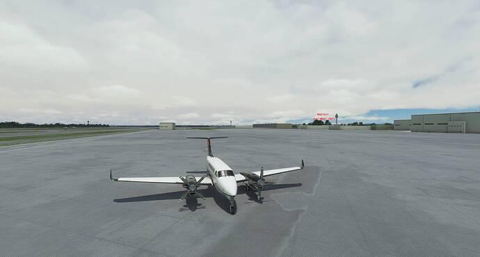 Microsoft Flight Simulator 10_18_2021 8_24_37 AM