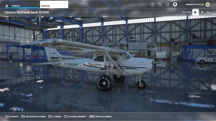 Microsoft Flight Simulator 30.07.2021 00_24_51