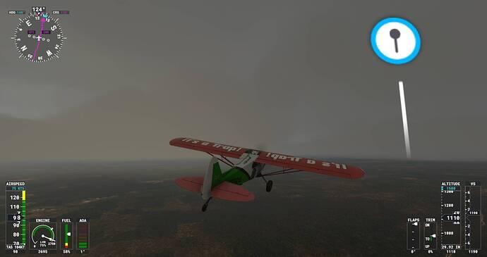 Microsoft Flight Simulator Screenshot 2021.07.29 - 22.05.27.79