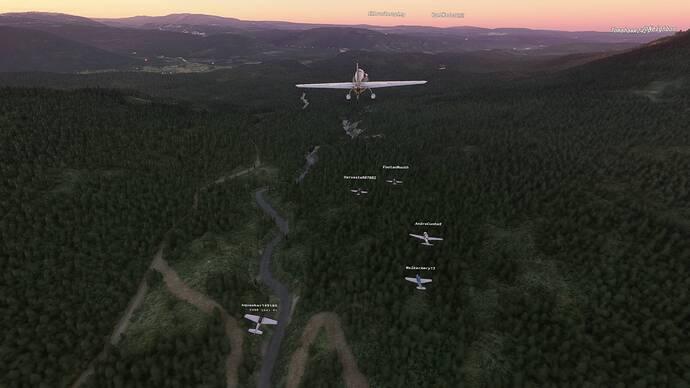 Microsoft Flight Simulator 7_24_2021 2_04_24 PM