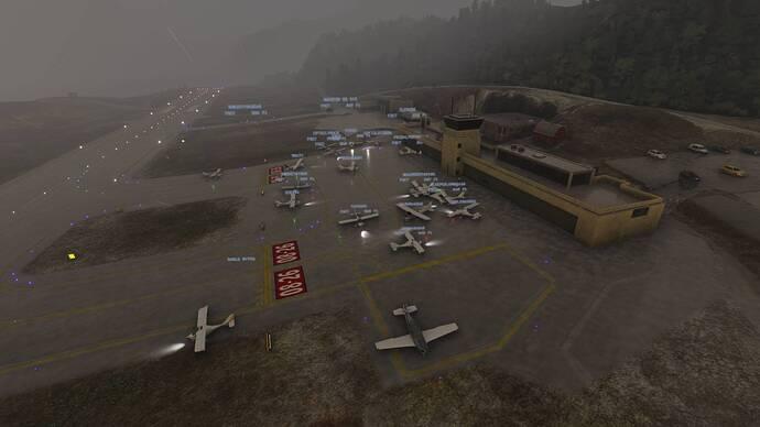 Microsoft Flight Simulator 7_17_2021 12_30_56 PM