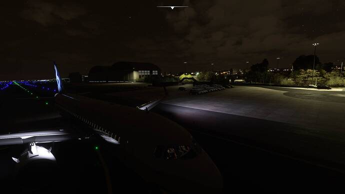 Microsoft Flight Simulator Screenshot 2021.09.12 - 01.22.36.18
