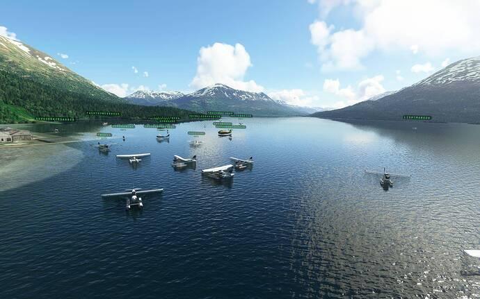 Microsoft Flight Simulator 10_09_2021 11_18_12 p.m.