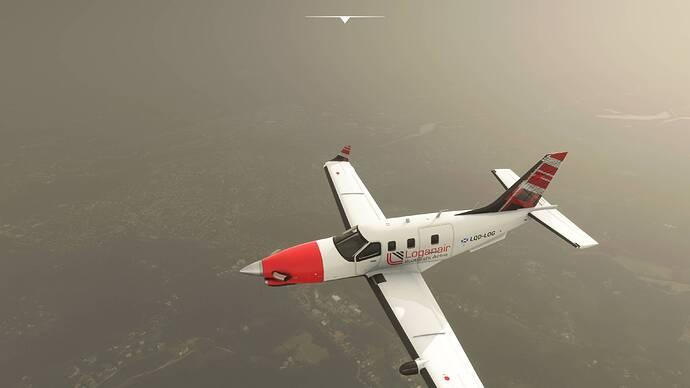 Microsoft Flight Simulator 8-8-2021 14_43_10