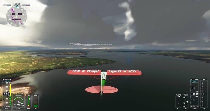 Microsoft Flight Simulator Screenshot 2021.07.29 - 21.06.21.37