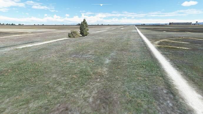 Microsoft Flight Simulator 29.07.2021 09_21_00