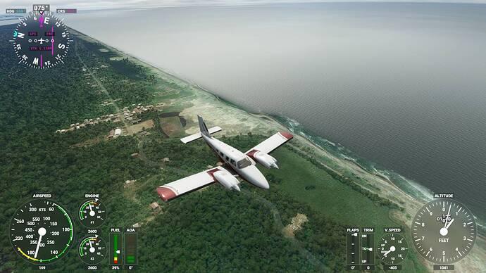 Microsoft Flight Simulator 6_2_2021 2_24_09 PM
