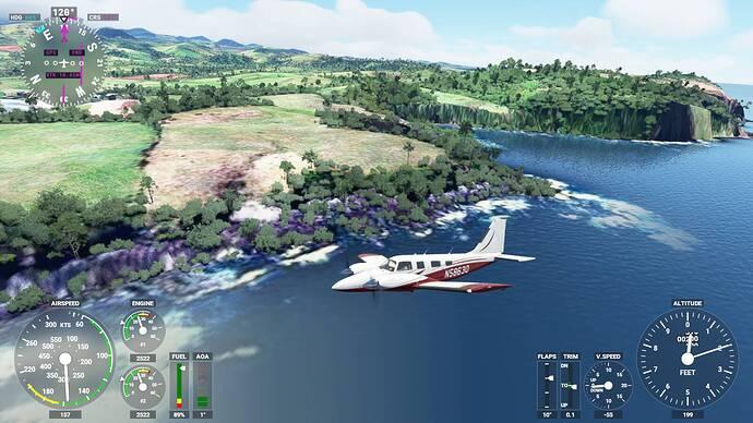Microsoft Flight Simulator 5_31_2021 11_58_37 AM