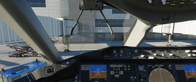 Microsoft Flight Simulator 8_18_2020 1_04_08 AM