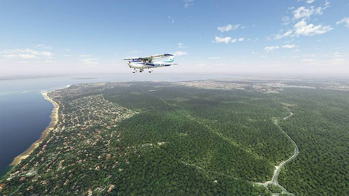 Microsoft Flight Simulator 2021-05-15 14_45_41