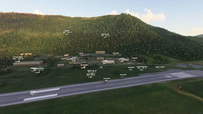 Microsoft Flight Simulator - 1.17.3.0 17.07.2021 21_12_29