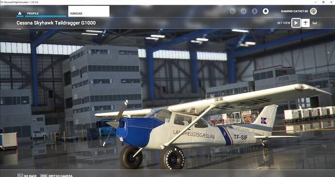 Microsoft Flight Simulator 30.07.2021 00_23_23