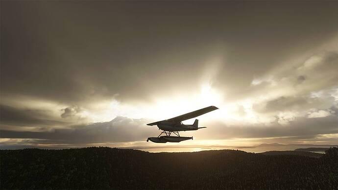 Microsoft Flight Simulator 2021-07-30 18_31_02 copy