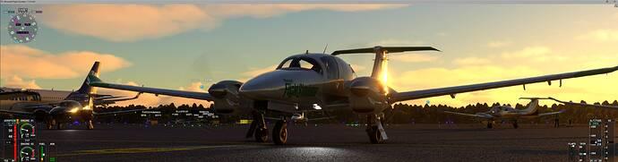 Microsoft Flight Simulator 7_31_2021 2_39_27 PM