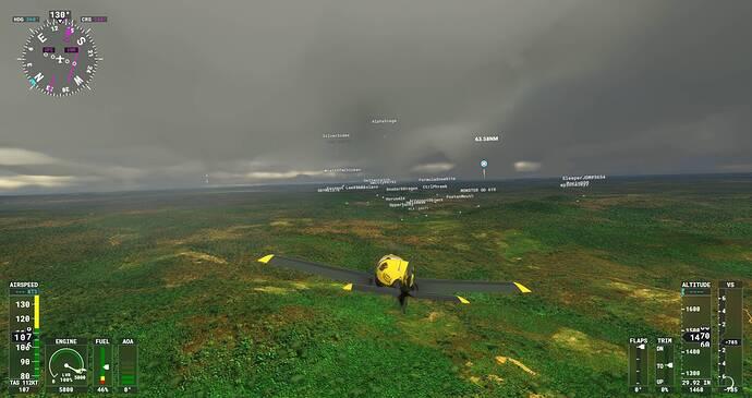 Microsoft Flight Simulator Screenshot 2021.08.01 - 22.05.07.88