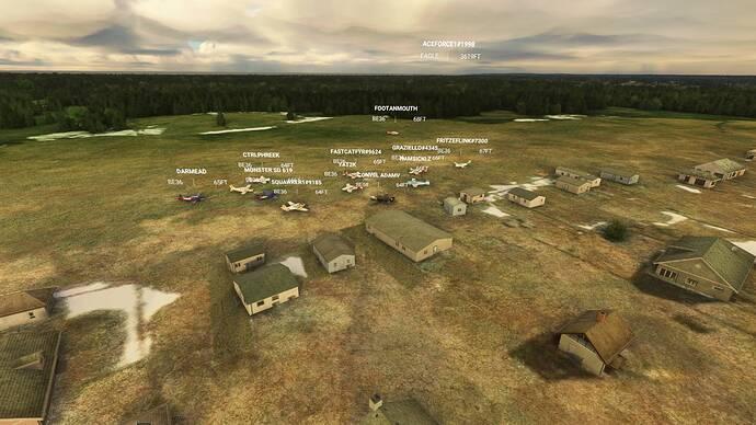 Microsoft Flight Simulator 9_4_2021 2_39_03 PM
