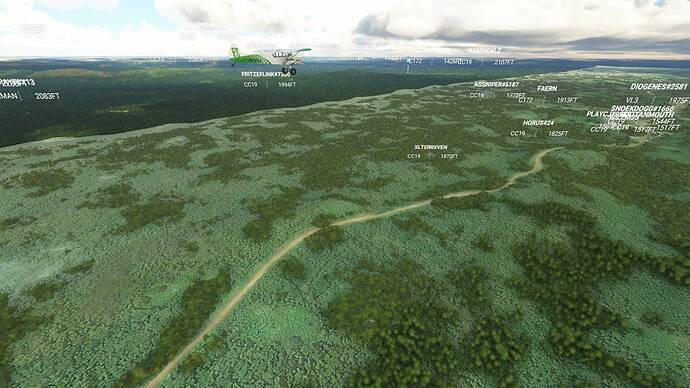 Microsoft Flight Simulator 9_6_2021 12_59_09 PM